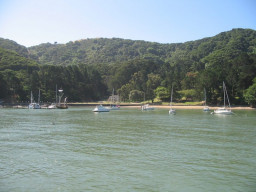 Ayala Cove Angel Island