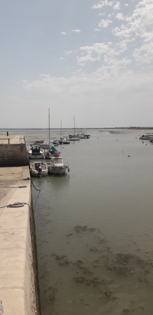 Anchorages and marinas in Nouvelle-Aquitaine