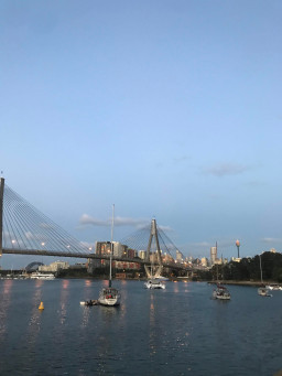 Blackwattle Bay East