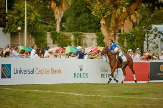 Polo In The Port 2019